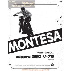 Montesa Cappra 250 V75 Despiece Y Manual Usuario
