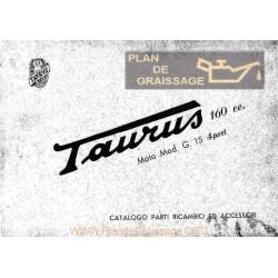 Taurus G15 160cc Cat Parti Di Ricambio